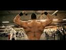 Мотивация для тренировок в спорт зале