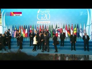 Кошки не хотели пускать Обаму на саммит G20 в Турции