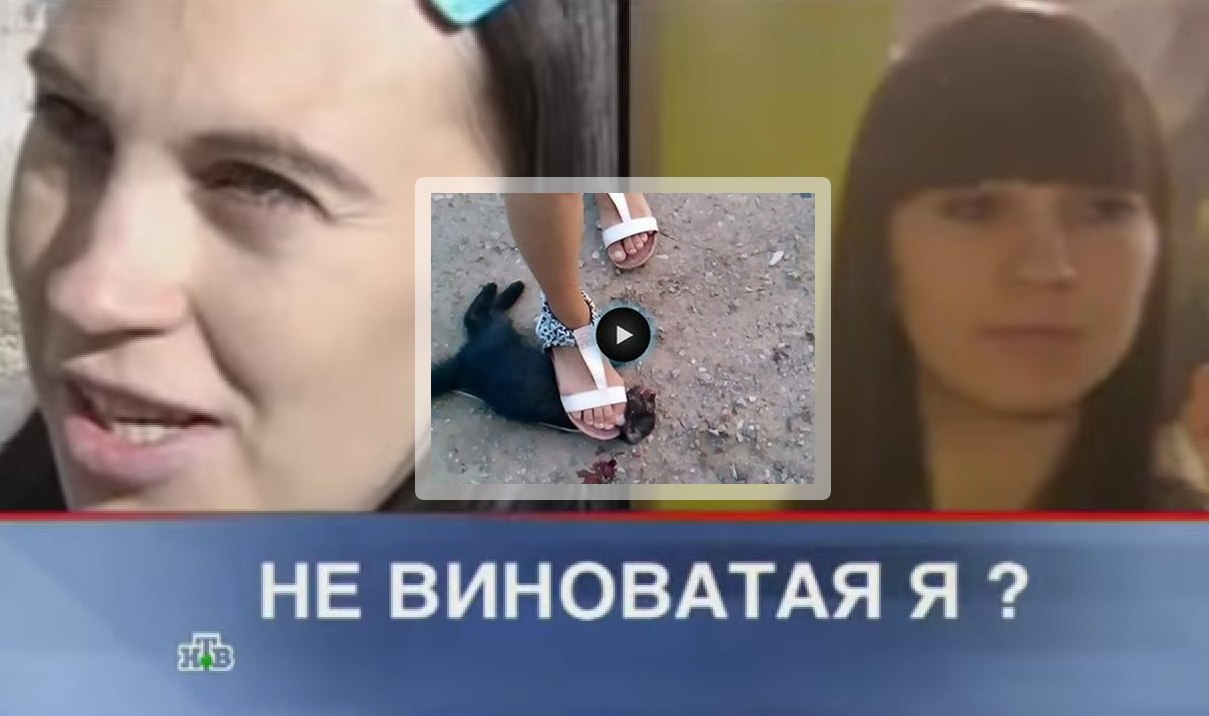 Садисты издеваются над девушкой фото 319-284