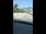 Лошадка на дороге!!! #краснаяполяна #сочи #природа #животные #горы