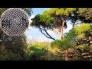 Ch1na Prod : Celina - Instrumental Sad Gitar Hip Hop Rap Beat 2015
