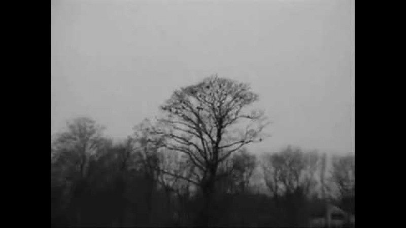 GRB Season 41 Eels - I need some sleep » Freewka.com - Смотреть онлайн в хорощем качестве