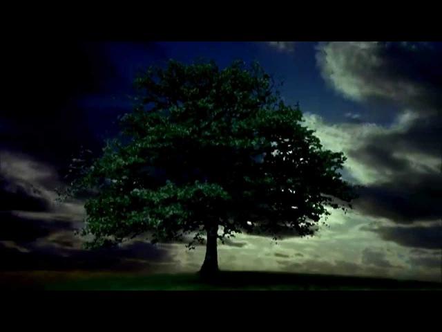 William Orbit - Barber's Adagio For Strings (5.1)