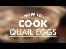 How to Cook Quail Eggs Basic Cooking Skills GastroLab