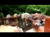 Русские алкаши спалили хату, живут на природе. Драка алкашей. Мат