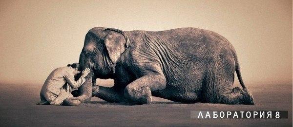 Человек, умеющий обнимать — хороший человек.© Достоевский
