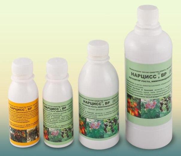 препарат Нарцисс