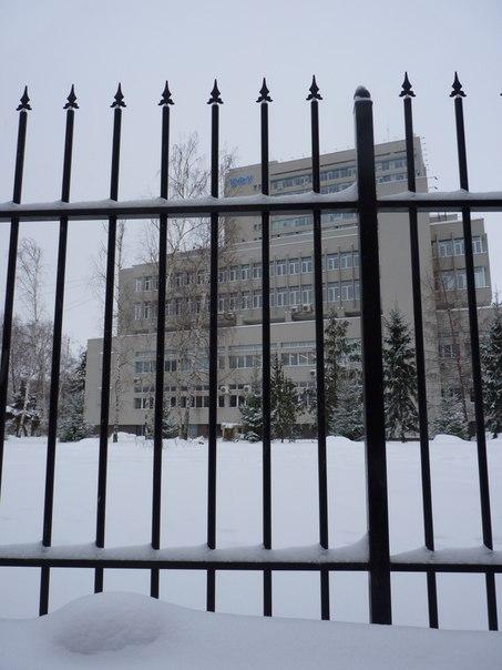 Общественники предложили руководству КФУ обнести Ленинский сад в Казани колючей проволокой