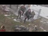 Лучшая армия Европы - армия Украины _ Army of Ukraine