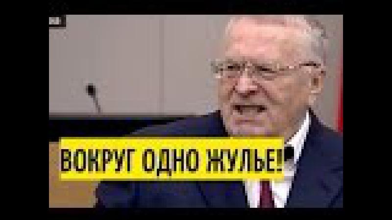 Медведев молча слушал правду от Жириновского 19.04.17