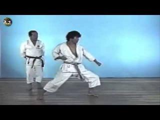 SHOTOKAN karate - The Nakayama - Empi Kata and Bunkai (Ката Эмпи)