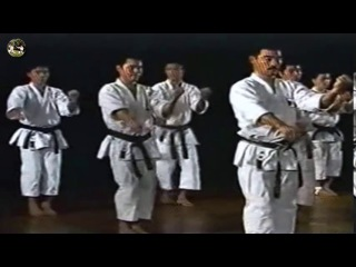 SHOTOKAN karate - The Nakayama - Heian Sandan Kata and Bunkai (Каратэ Шотокан Накаямы)