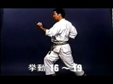 SHOTOKAN karate - The Nakayama - Heian Nidan Kata and Bunkai (Каратэ Шотокан Накоямы)