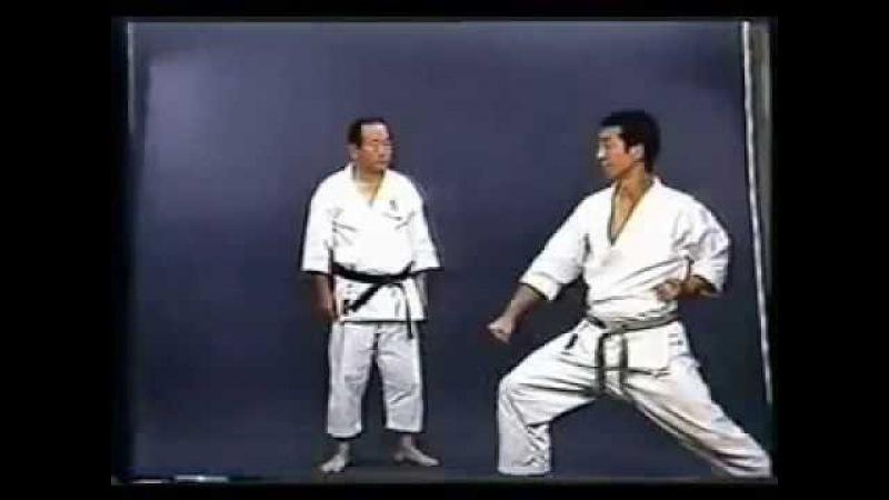 SHOTOKAN karate - The Nakayama - Heian Shodan Kata and Bunkai (Каратэ Шотокан Накоямы)