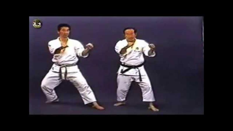 SHOTOKAN karate - The Nakayama - Heian Yondan Kata and Bunkai (Каратэ Шотокан Накаямы)