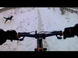 Зима.велосипед.Собака.