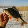 Рыбалка СНГ
