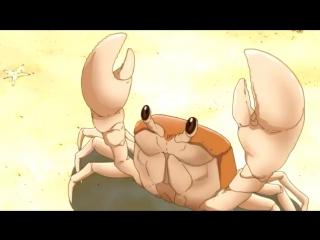 rip mr krabs