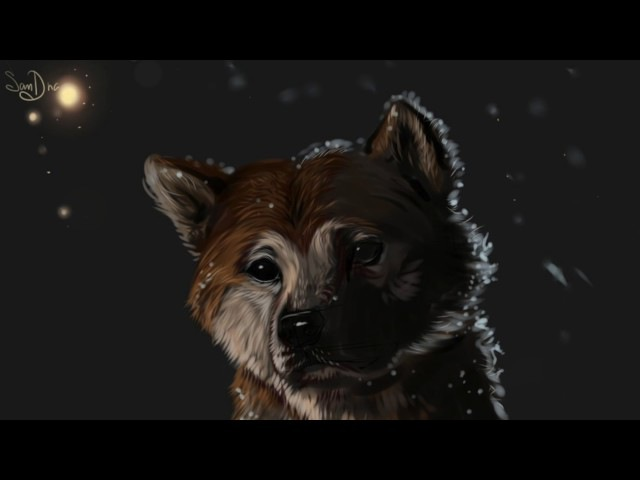 Fontenele NXT Lucas King - Hachi: A Dog's Tale | Goodbye Piano Orchestra