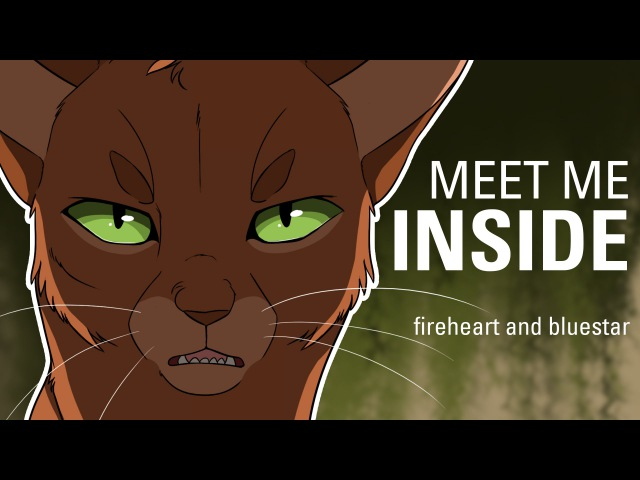MEET ME INSIDE Bluestar and Fireheart