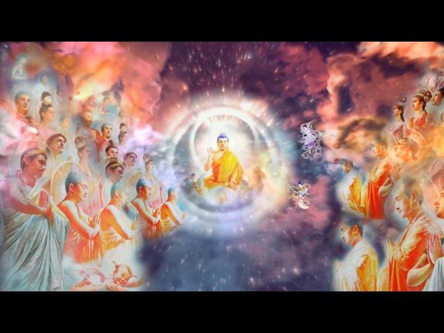 Фалунь Дафа (Фалуньгун). ВЕЧНАЯ ИСТОРИЯ. Дорожите! Великий Закон Вселенной перед ...