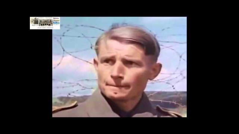 Unbekannter Soldat - Rheinwiesenlager - Annett Müller