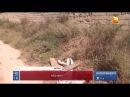 Подозреваемый в зверском изнасиловании 6-летней девочки в Актау признан вменяемым