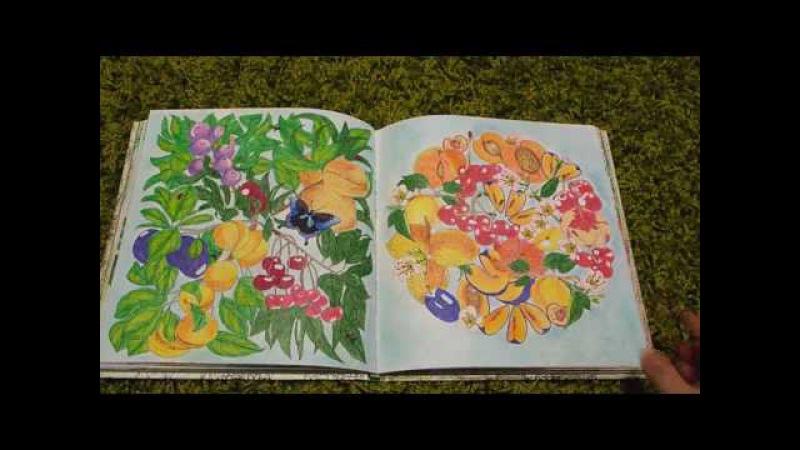 Обзор полностью раскрашенной книги Сад радостей земных