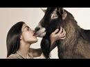 🅰️ 🅰️ Запрет на секс с животными должен быть снят? ⛔