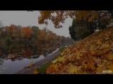 Прогулка по осени - 2013 (Калининград. Нижнее озеро)