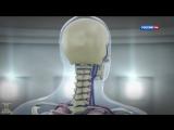 Испытание перегрузкой. [Приключения тела] Наука 2.0 (Документальные фильмы National Geographic)