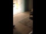 Відео 25.03.15 21 30 37