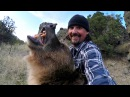 GoPro Man and Grizzly Bear Rewriting History