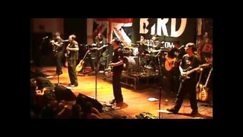 Hey Bulldog - Black Bird Band (Beatles Cover)