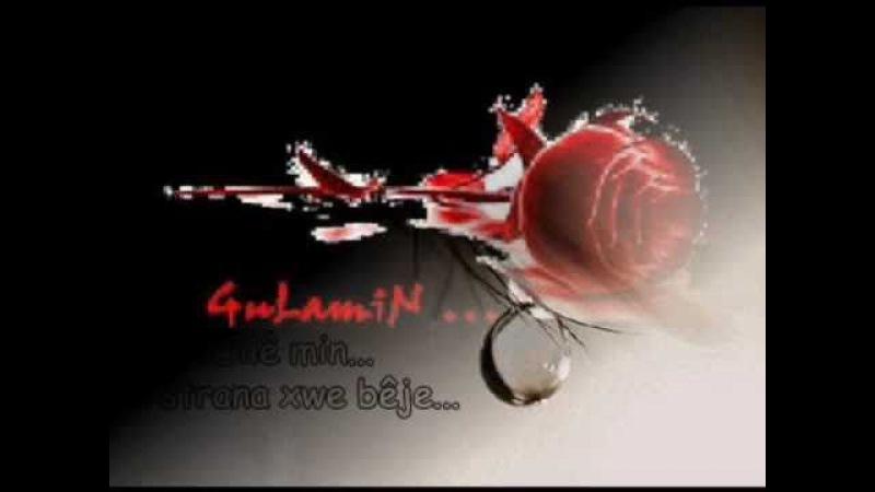 Kurdisch Music Evina min Yara min