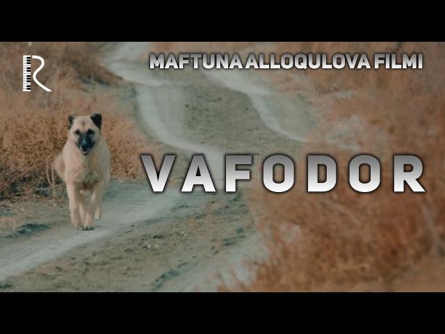 Vafodor (qisqa metrajli film)   Вафодор (киска метражли фильм)