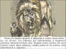 Лев и собачка Л Н Толстой Автор Сафонова О