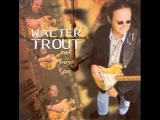 Walter Trout - Nothin' But the Blues