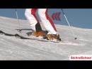 Урок 10.1 - Видео лыжи Как скользить на параллельных лыжах?(4)