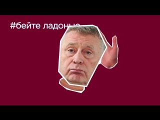 moana - 2016 - hdrip -rus - Смотреть на Мета Видео онлайн