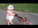Дама с собачкой....новая версия