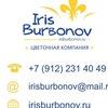 Цветы Екатеринбург Ирис Бурбонов