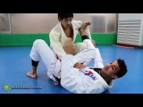 Spider Guard Scissor Sweep to Triangle with Romulo Barral (BJJLIBRARY.COM) spider guard scissor sweep to triangle with romulo ba