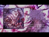 Before The Harvest - Appropriated By the Sluagh (OFFICIAL STREAM)