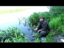 Отличная наживка для ловли рыбы водяной илистый червь