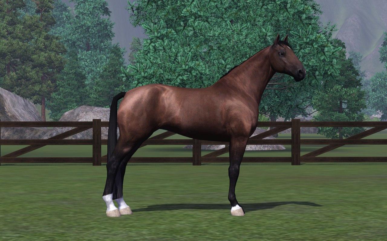 Регистрация лошадей в RHF 2 - Страница 7 On9Njta6DNI