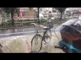 Early snow in Tokyo!