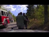 LiveLeak com Officer and Citizens Save Man From Burning Car