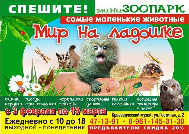 Уникальная выставка «Мир на Ладошке» в Краеведческом