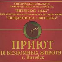 priut_vitebsk